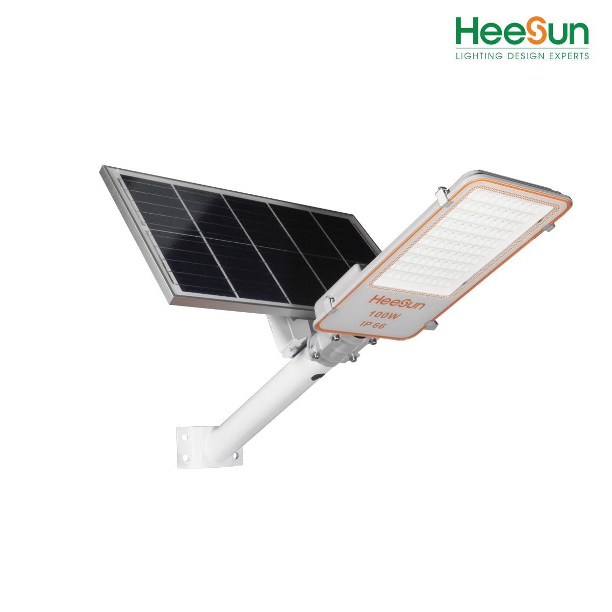 Đèn đường năng lượng mặt trời HS-DNL100 - HEESUN VIỆT NAM