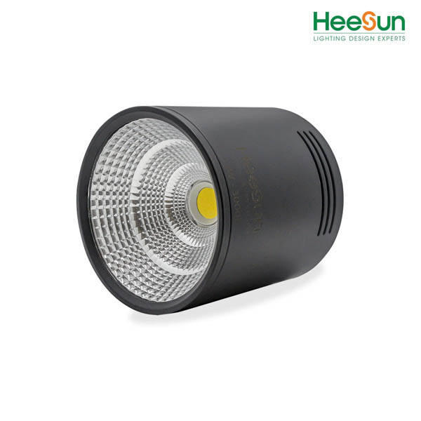 ĐÈN LED ỐNG BƠ HS-OCB12-Đ - HEESUN VIỆT NAM